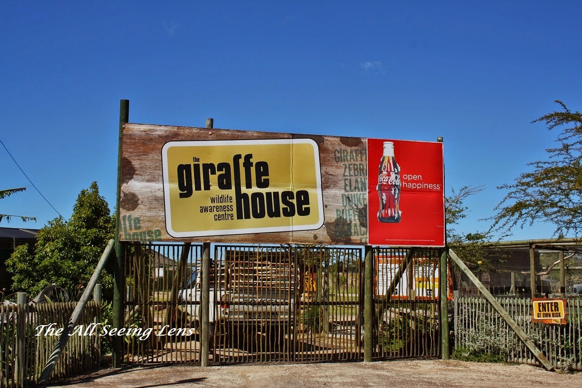 Entrance to Giraffe House in the Cape