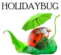 Holiday Bug