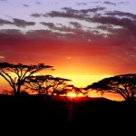 5 must-see places in Africa