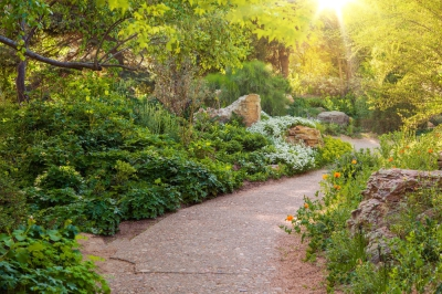 Breathe in the scent of blooms at these beautiful gardens in Cape Town