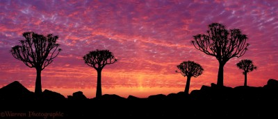 The greatest sunsets in Southern Africa