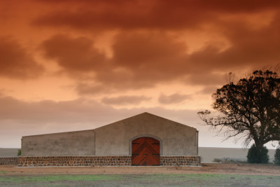 Three vineyards you will love visiting in the Overberg